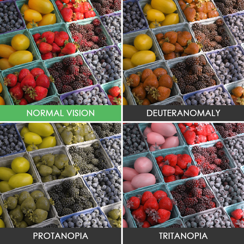 color blindness History in 1798, english chemist john dalton published the first scientific article about color blindness that was after he found out that he was color blind the article was called extraordinary facts relating to the vision of colours.