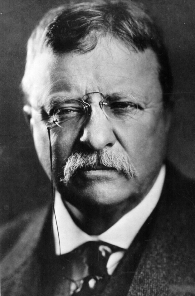 a look at the career of theodore roosevelt as the president of the united states